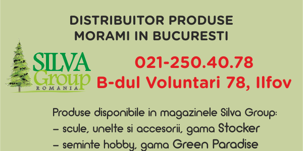 Distribuitor Morami in Bucuresti