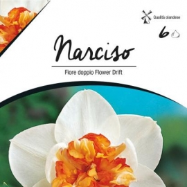 Narcise - Narcise duble Flower Drift