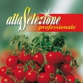 Green Paradise - professionale - Tomate - Red Cherry